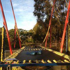 bungee-trampoline2-400w